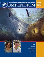 Compendium Summer 2013