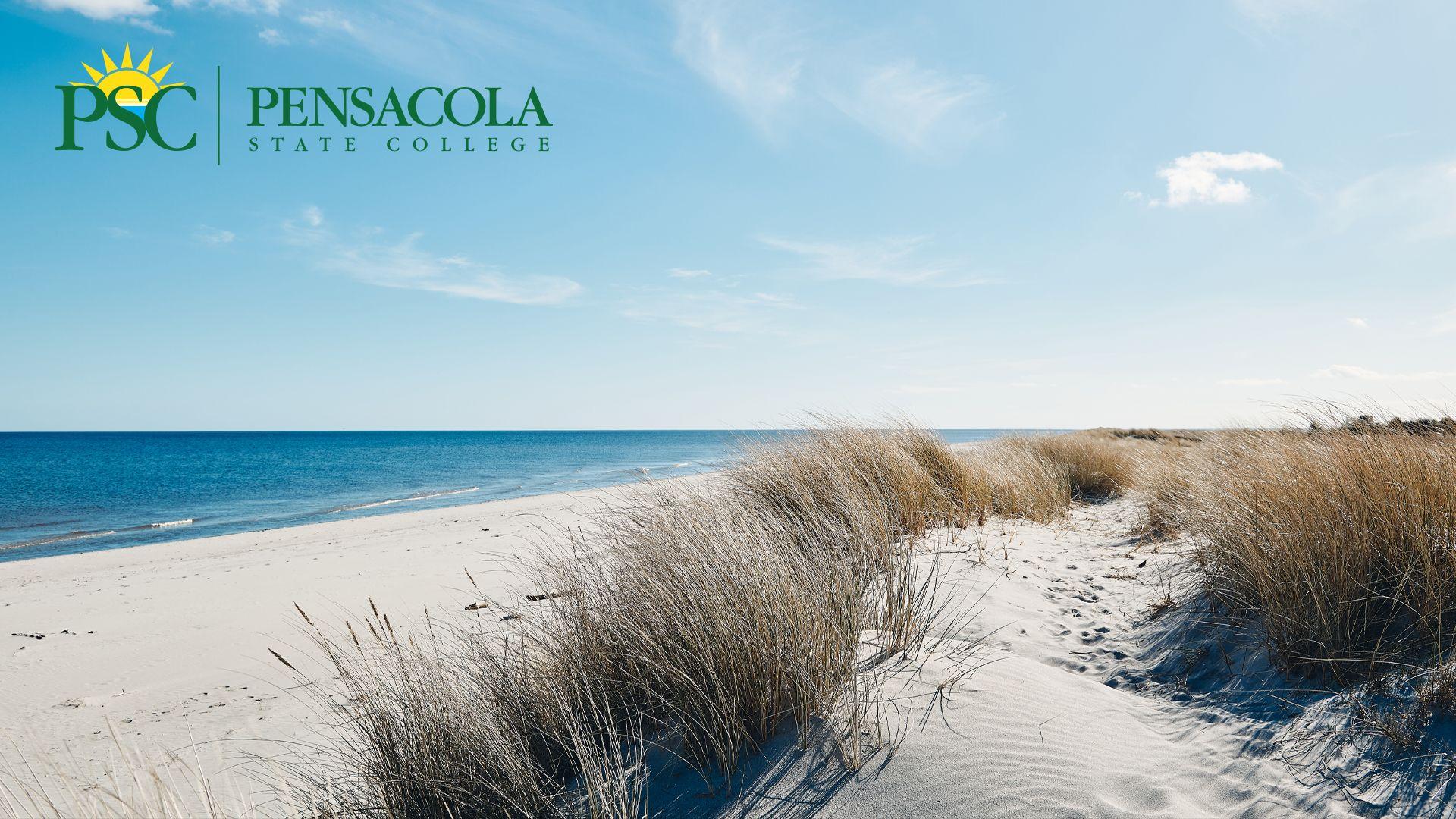 Virtual Background PSC Beach 2
